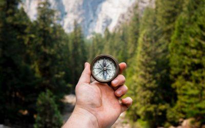 The importance of having purpose